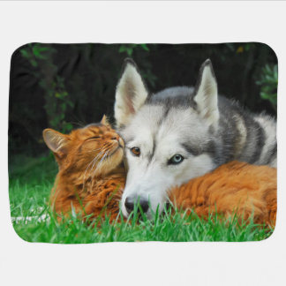 Somali Cat Siberian Husky Cute Friends Huddle Love Receiving Blankets