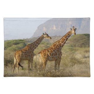 Somali Giraffe, Reticulated Giraffe, Giraffa Placemat