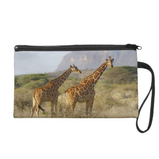 Somali Giraffe, Reticulated Giraffe, Giraffa Wristlet