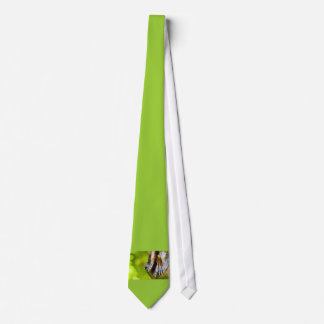 some believe in green tie