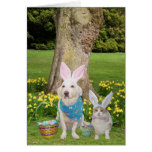 Some Bunnies Love You! Greeting Card