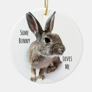 Some Bunny Loves Me Collection Rabbit Easter Christmas Ornament