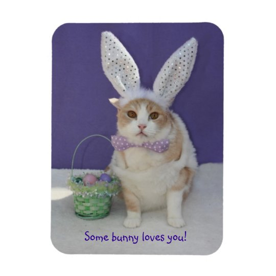 Some Bunny Loves You Easter Kitty Cat Rectangular Photo Magnet