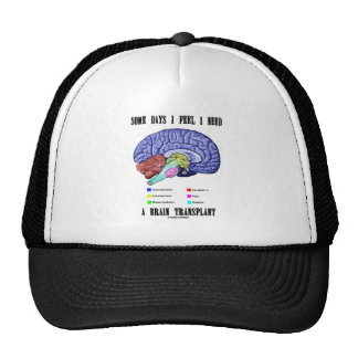 Some Days I Feel I Need A Brain Transplant Hat