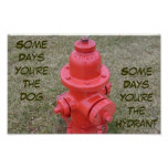 Some Days You're The Dog, Some Days The Hydrant Poster