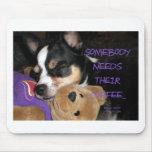 Somebody Needs Coffee Chihuahua Dog