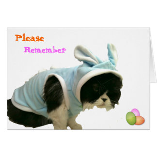 Somebunny - Happy Easter Greeting Card