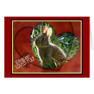 Somebunny Loves You! Bunny Photograph Greeting Card