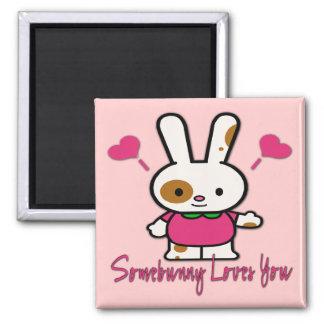 Somebunny Loves You/Me Fridge Magnet