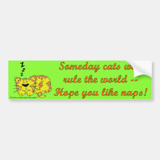 Someday Cats Bumper Stickers