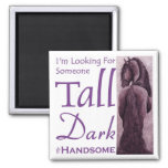 Someone Tall Dark & Handsome - Frisian Horse Fridge Magnet