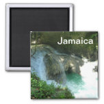 Somerset Falls Jamaica Photo Magnet Waterfall