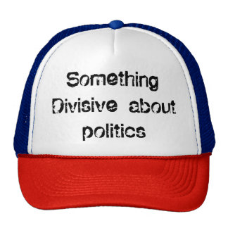 Something Divisive about politics Cap