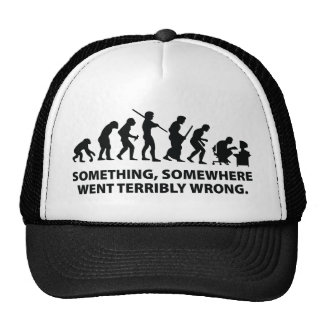 Something, Somewhere Went Terribly Wrong Cap