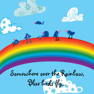 Somewhere Over Rainbow Accessories Zazzlecouk