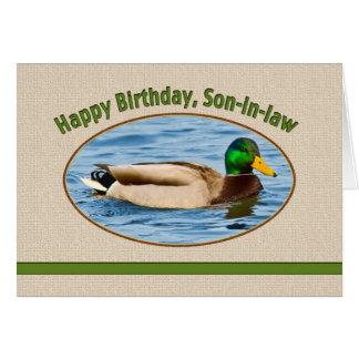 Son-in-law s Birthday Card with Mallard Duck