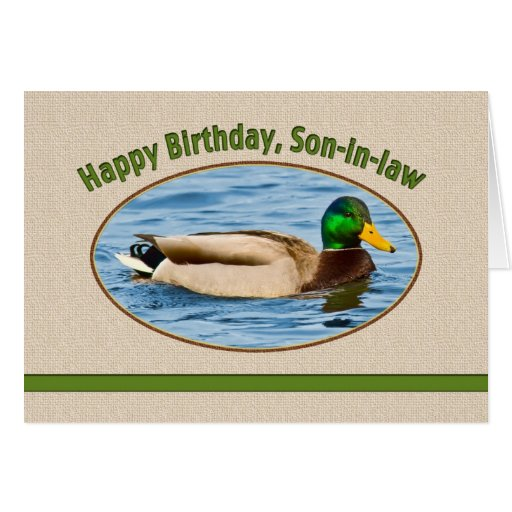 Son-in-law's Birthday Card with Mallard Duck
