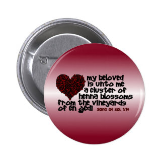 Song of Solomon 1 14 Pins