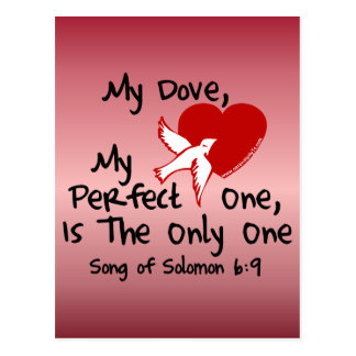 Song of Solomon 6:9 Postcard