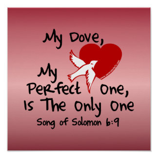 Song of Solomon 6:9 Poster