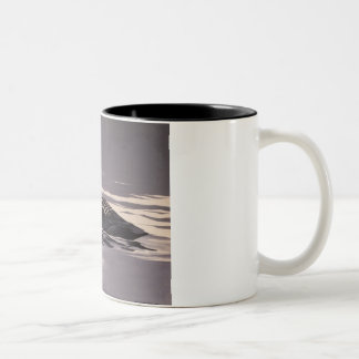 Song of the Loon Mugs