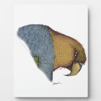 song parrot, tony fernandes plaque