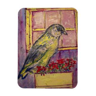songbird in window box sketch rectangular photo magnet