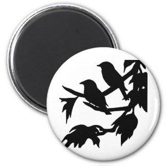 songbirds magnet