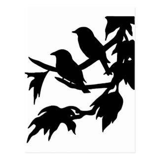 songbirds postcard
