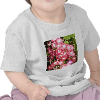 Sonia Gandhi Smile Tee Shirts