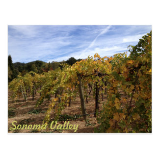 Sonoma Valley Postcard