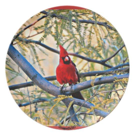Sonoran Cardinal Plate