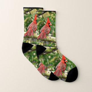 Sonoran Cardinal Unisex Socks 1