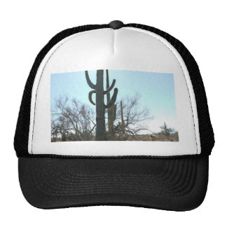 Sonoran Desert scene 05 Cap