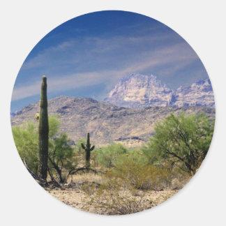 Sonoran desert sticker
