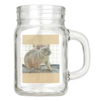 Sonoran Gopher Mason Jar Beverage Glass