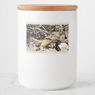 Sonoran Squirrel Custom Food Container Label
