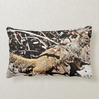 Sonoran Squirrel Poly Lumbar Pillow