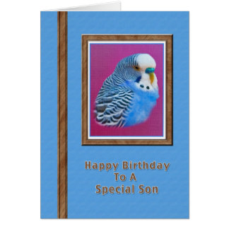 Son's Birthday Card with Blue Parakeet