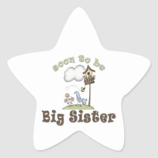 Soon To Be Big Sister Birdhouse Star Stickers