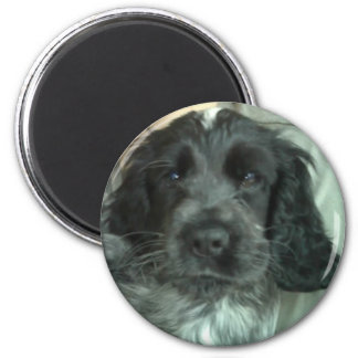Sooty 6 Cm Round Magnet