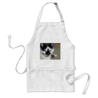 Sooty Apron