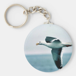 Sooty-backed or Western Gull Keychains