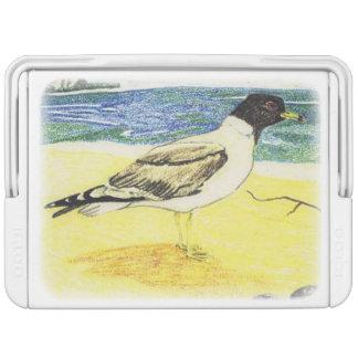 Sooty Gull Igloo Cooler