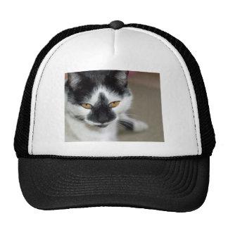 Sooty Hats