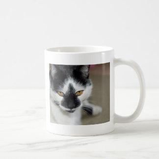 Sooty Mugs