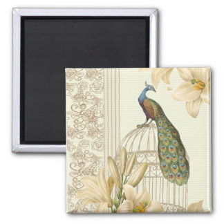 Sophisticated vintage Peacock & Cage Lily Square Magnet