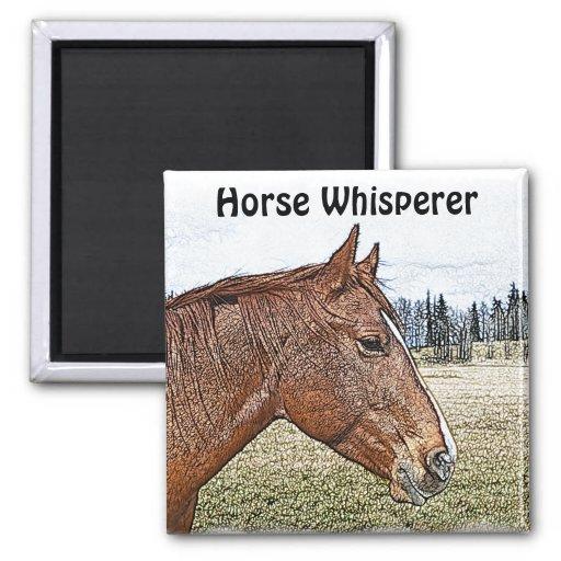 Sorrel Horse Portrait Equine Art Illustration Fridge Magnets