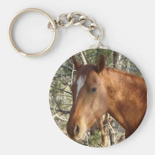Sorrel Love Key Ring