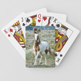 Sorrel Tovero Paint Horse Playing Cards